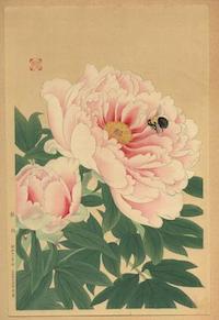 Fukuda_Suiko-No_Series-Peony_and_Bee-00034592-030708-F12